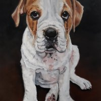 dierportret-Buddy-30-x-40-cm-olieverf-op-paneel