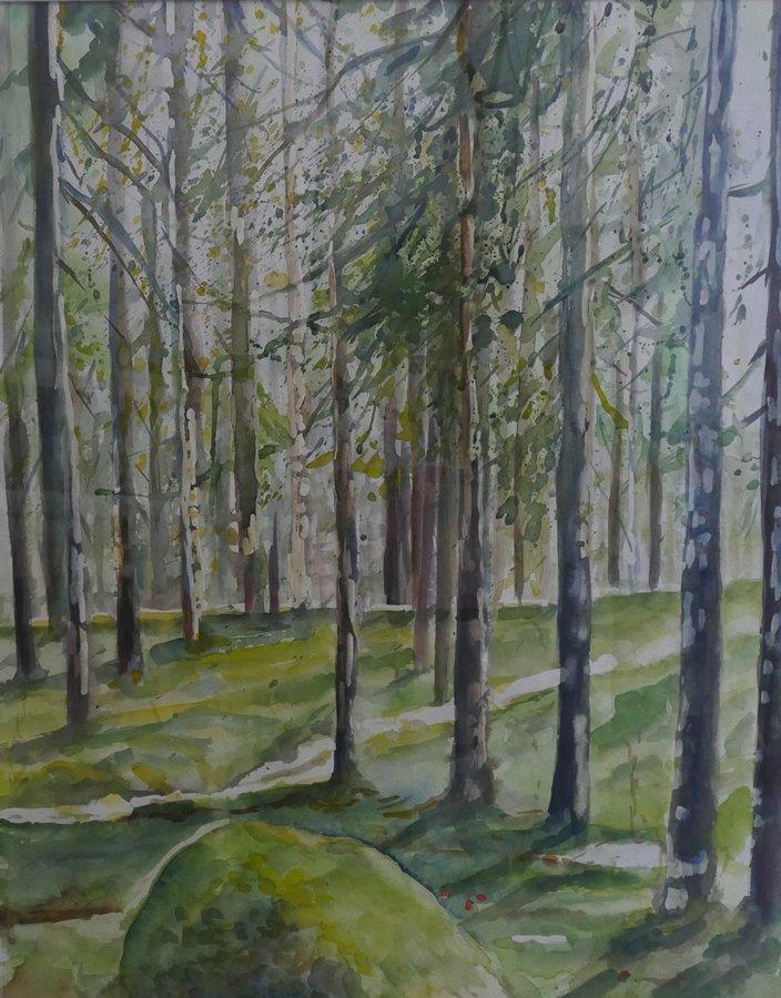 Zweeds bos, aquarel op papier, 75x60cm