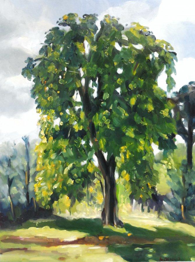 Kastanjeboom, olieverf op paneel, 40x30cm