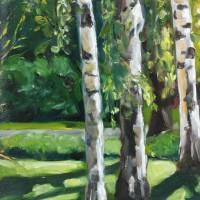 Berkenbomen, olieverf op paneel, 22x30cm